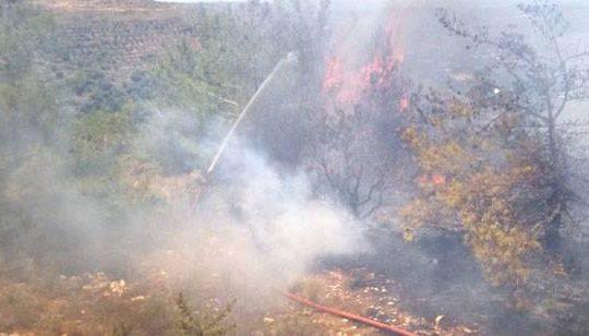 الجيش والدفاع المدني أخمدا حريقا في المجدل  و كفتون