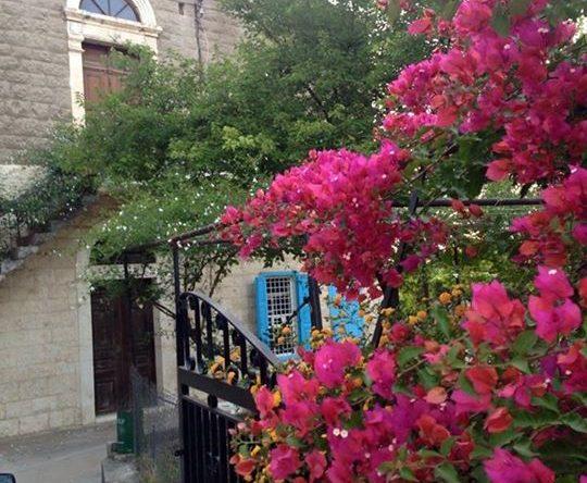 الأزهار تستقبلك على المدخل بأبهى حلتها والياسمين يرافقك على الدرج في كفرعقا الكورة