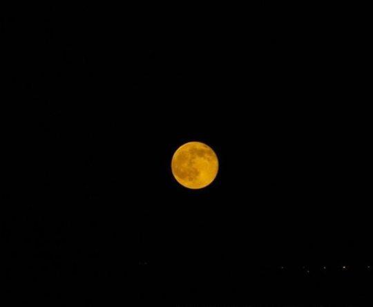 الكورة أميون: القمر بدر ينير ليالينا