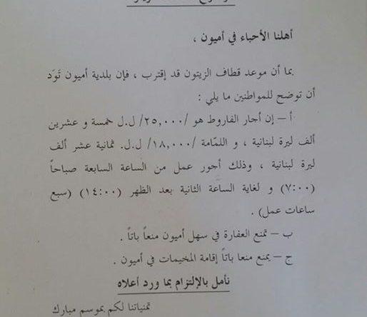 تعميم من بلدية أميون بخصوص موسم قطاف الزيتون