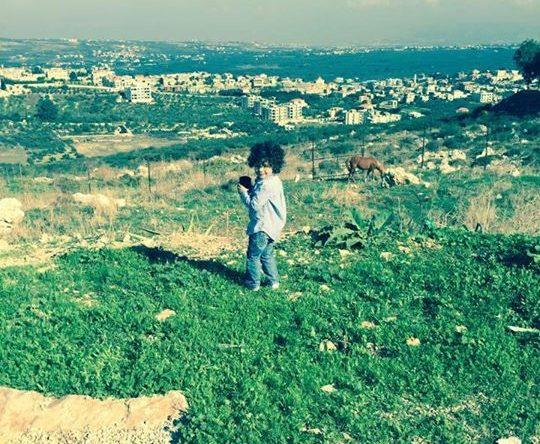 ضيف ظريف زار أميون القلعة البارحة :)