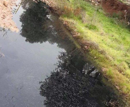 نهر العصفور مهدد بالتلوث في بزيزا والجوار ومناشدات لإنقاذه