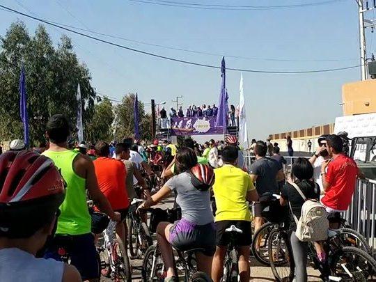 أميون Bike Koura 2